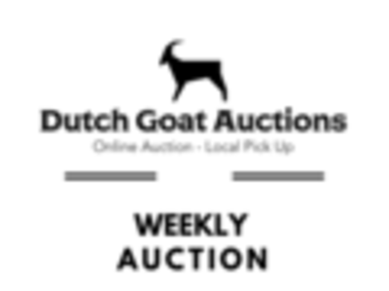 9/16 (Monday 2PM) Weekly Household New-Overstock Public Auction